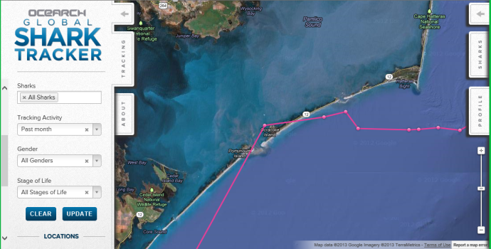 OCEARHs Global Shark Tracker map of Great White Shark Mary Lee.