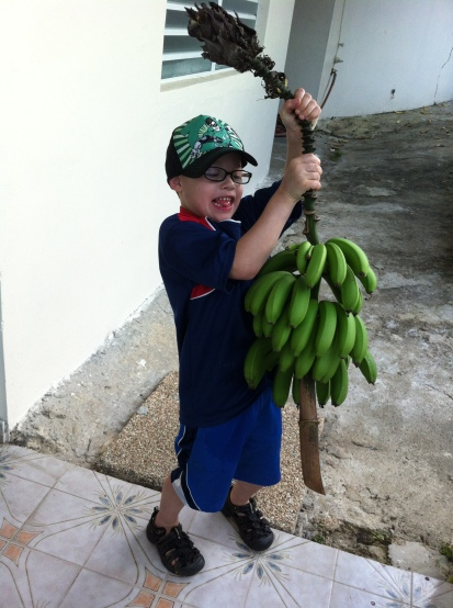 My lil'man got himself some bananas from my grandparents back yard in Puerto Rico